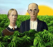 Couple in Weed Field